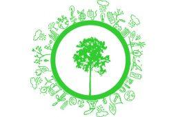 green-procurements